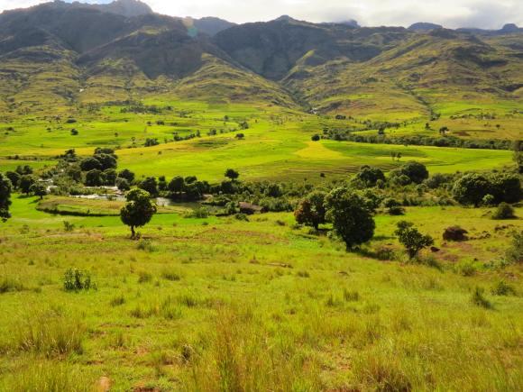 Parc de l'Andringitra
